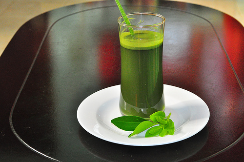 barley-grass-drink