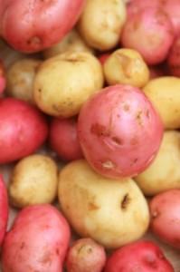 washed-fresh-potates
