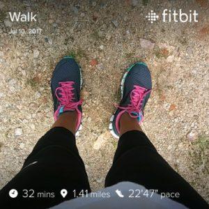 walking stats