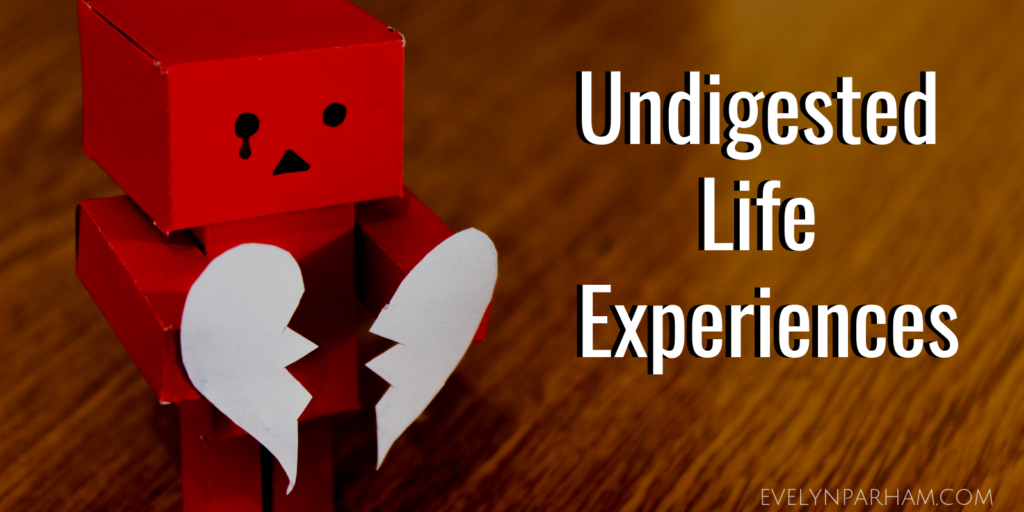 Undigested Life Experiences - Blog Post